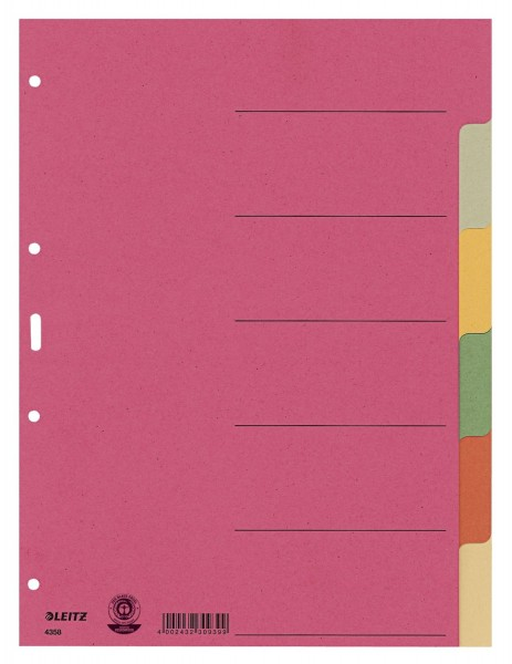 Leitz 4358 Register - Karton, blanko, A4, 6 Blatt, farbig