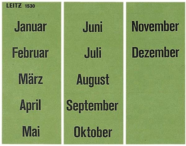 Leitz 1530 Inhaltsschild Monatsnamen, selbstklebend, 120 Stück, grün